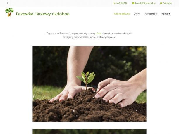 Dendropak Sprzedaż drzewek i krzewów ozdobnych