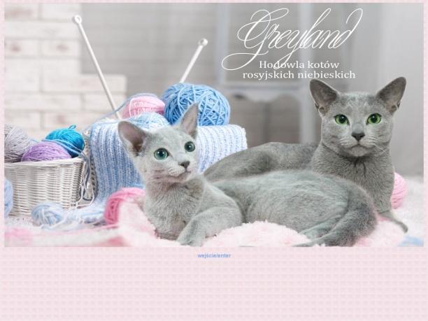 Greyland hodowla kotów rosyjskich niebieskich