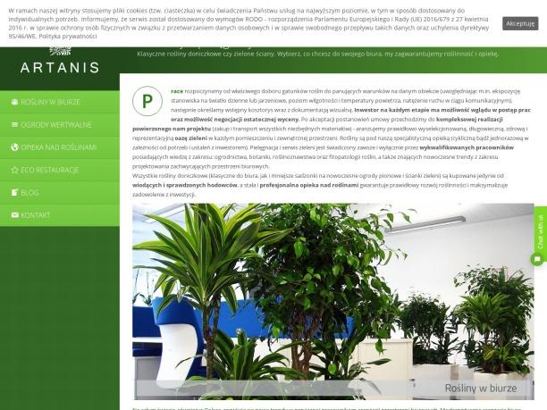 Rośliny doniczkowe do biura